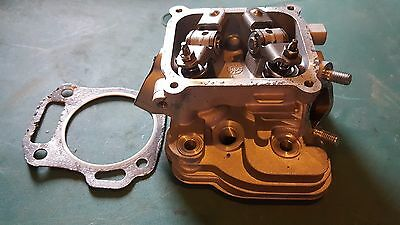 6.5 HP PREDATOR 212 cc  ENGINE CYLINDER HEAD & Gasket 60363