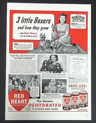 1943 Red Heart Dog Food Original Advertisement Boxers Spaniels Vintage Print AD