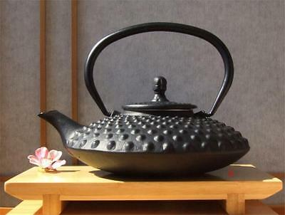 Tetsubin Cast Iron black big hobnail teapot 0.8L