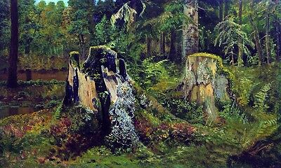Oil painting Shishkin Ivan Ivanovich Landscape with the stump in forest scene