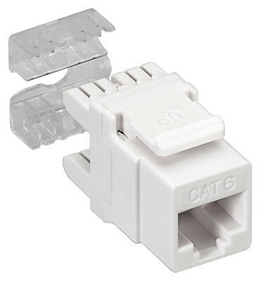 KeyStone Jack CAT 6; NET Keystone CAT 6 UTP LSA