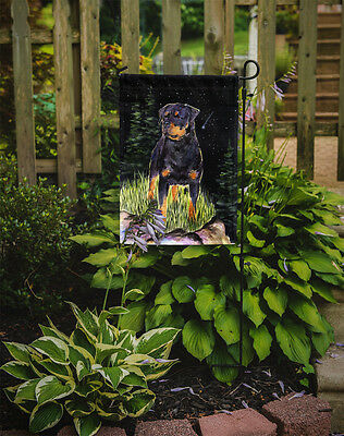 Carolines Treasures  SS8475GF Starry Night Rottweiler Flag Garden Size