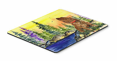 Carolines Treasures  SS8509MP American Water Spaniel Mouse Pad / Hot Pad / Trive