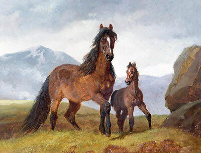 Hand painted Oil painting nice animals red horse with her baby foal in grass