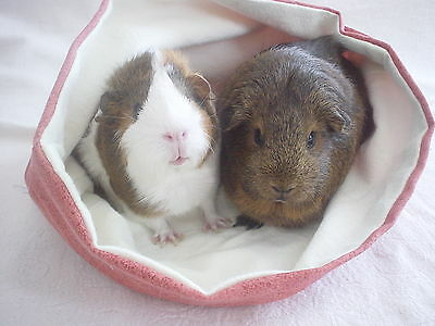 Chucklebunnies Guinea pig cuddle bed pocket for 2, lilac fleece and white inside