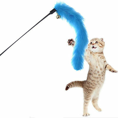 Kitten Cat Pet Teaser Turkey Feather Interactive Fun Toy Wire Chaser Wand Cute