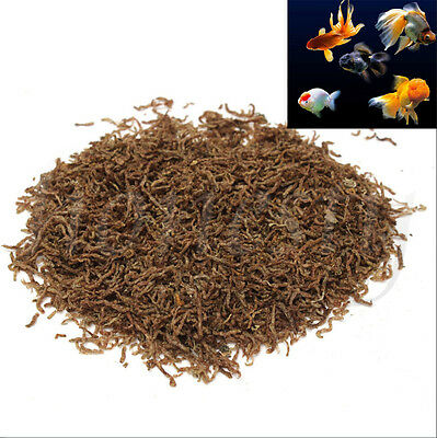 60~240g Freeze Dried Blood Worm Fresh Tropical Fish Discus Tetra Food Feeding