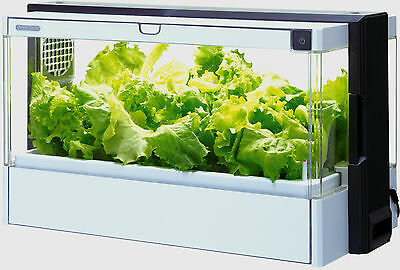 Green Farm Indoor Grow Box Herbs & Vegetables Automatic Cultivator