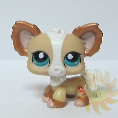 Littlest Pet Shop LPS Animal Loose Toy #1082 Shimmer Chihuahua Puppy Dog Blemish