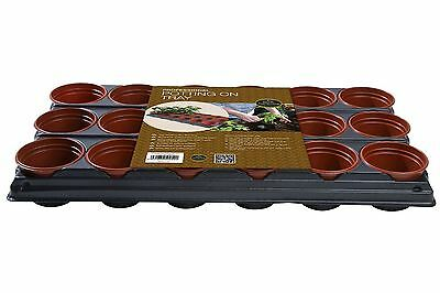 Pot Potting Tray Seed & Cutting Young Seedlings Plants Greenhouse Garden