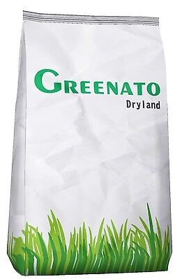10kg Lawn Seed Drought Resistant Grass