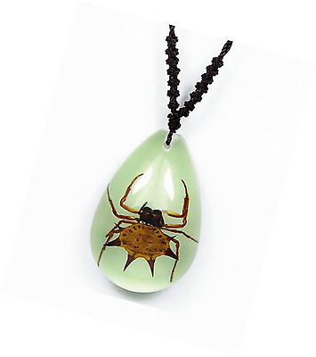 Teardrop Glow In The Dark Necklace w/ REAL Spiny Orbweaver Spider