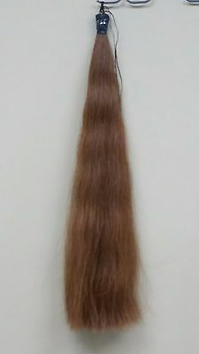 Beautiful Real Horse Hair Tail Extension By Kathy's Tails! Free Shipping!