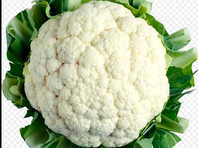 "Cauliflower Seeds ""Snowball"" ( Approx 200 Seeds) Very Popular Variety"