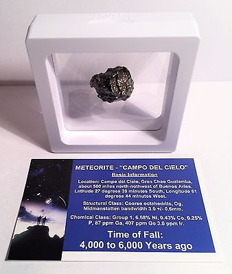 """RARE"" 16.1 Gram Meteorite ""Campo Del Cielo"" Museum Quality with stand and Cert"