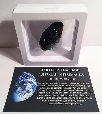 """RARE"" 17.6 gram (B) TEKTITE Museum Quality with stand and label"