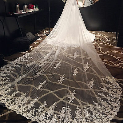 Stunning 3M 4M 5M 6M White/Ivory Tulle Applique Lace Edge Wedding Veil