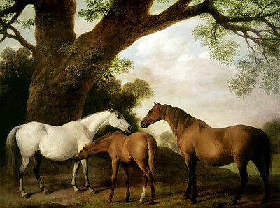 Oil painting happy family animals horses with their baby foal under huge trees