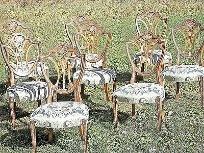 Set Of 8 Mid Century Classical Regency Paint Decorated Shield Back Dining Chairs