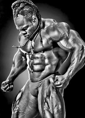 Kai Greene BodyBuilding Muscle Man Art Silk Poster 24x36 inch