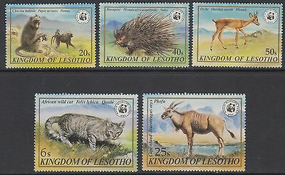 XG-BA033 LESOTHO - Wwf, 1981 Wild Animals, Cats, 5 Values MNH Set