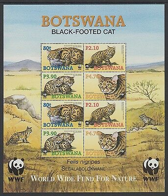 XG-BA410 BOTSWANA - Wwf, 2005 Wild Animals, Black-Footed Cat MNH Sheet