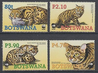 XG-BA411 BOTSWANA - Wwf, 2005 Wild Animals, Black-Footed Cat MNH Set