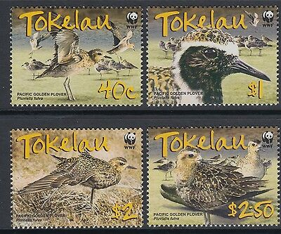 XG-BA862 TOKELAU ISLANDS - Wwf, 2007 Nature, Birds, Golden Plover MNH Set