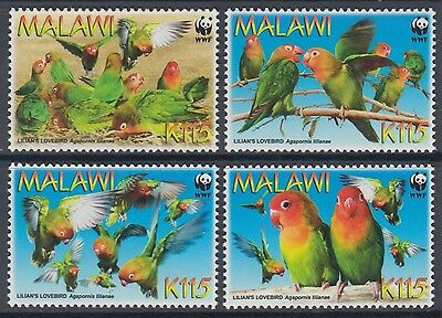 XG-BA887 MALAWI - Wwf, 2009 Lilian'S Lovebirds, Nature MNH Set