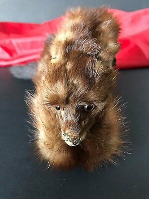 Vintage Russian Mink Taxidermy Fur / Pelt / Collar …beautiful collection Pelt