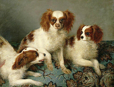 Dream-art Oil painting 3 puppies little dogs King Charles Spaniels Hand painted