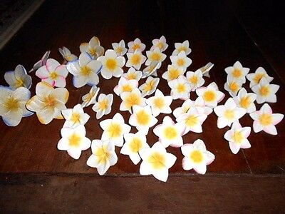 48 wooden FRANGIPANI FLOWERS decoration decor tropical craft art carved