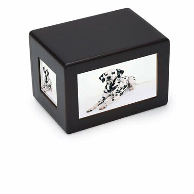 Pidsen Pet Dog Cat Cremation Urn Peaceful Memorial Keep sake Urn Pet  Photo Box