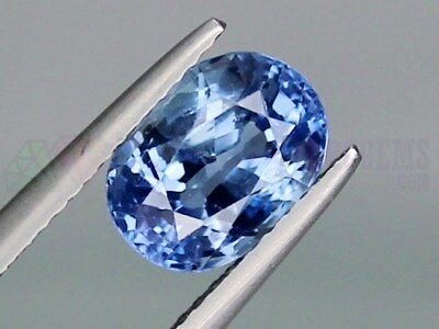Ceylon Blue Sapphire Oval 9x7mm 2.66ct Loose Natural Gemstone Sri Lanka