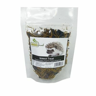 Natures Grub African Pygmy Hedgehog Treat Insect Mealworms Crickets