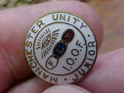 Fraternal Order of Odd Fellows Manchester Unity IOOF Vintage Pin   (14B1)