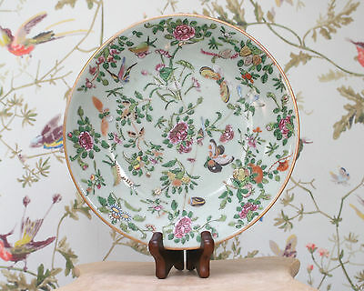 Antique Chinese Qing Period c19th Celadon Plate with Butterflies, SIGNED