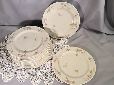 """Set of 12 Salad Plates THEODORE HAVILAND """"PINK SPRAY"""" Pattern - MADE IN USA"""