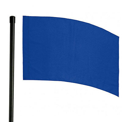 6' Black Pole and Color Guard Flag Package