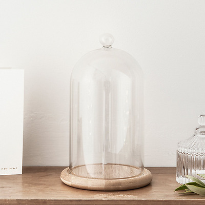 Domed Glass Cloche Bell Jar with Bamboo Tray Home Event Decor Display Elegant