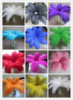 Wholesale beautiful ostrich feathers 6-24 inches / 10-60 cm variety of colors