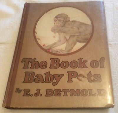 EJ Detmold The Book of Baby Pets Early Edition 1921 ** Coloured Plates **
