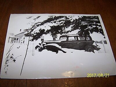 Vintage Original 5 X 7 1942 Photo, Cool Car In The Snow!