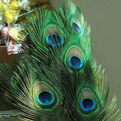 """100Pcs Real High Quality Natural Peacock Tail Eye Feathers 10""""-12"""" TO317"""