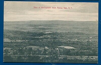 View of Burlingham from Roosa Gap New York ny old postcard