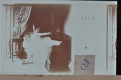 Stereoscopic Photography  Nude  , Glass Stereo Slide , 1905 Aprox.   N. 128