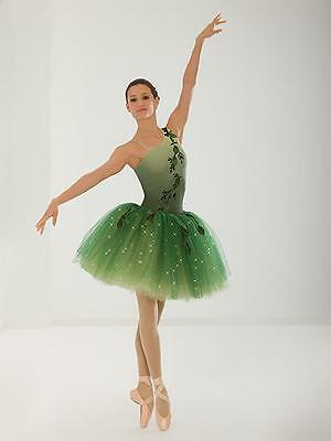 Dance Costume Child & Adult Sizes Green Ballet Pointe Group Competition Pageant