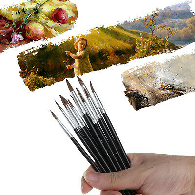12Pcs Artist Paint Brushes Pointed Set Oil Painting Watercolor Drawing Acrylic