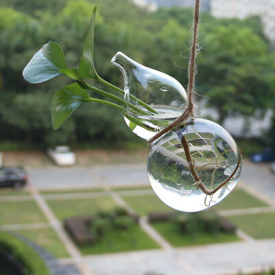 Clear Calabash Glass Wall Hanging Vase Pot Diy Plant Flower
