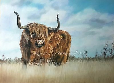 "Highland Cow Wildlife High Quality Print Drawing Pastel Painting 12"" x 16"""